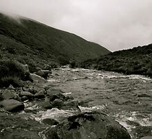 Downstream To Mosedale by Lou Wilson