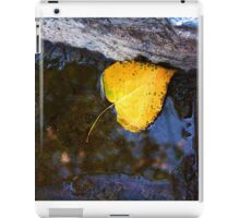 AUTUMN LEAF FALLEN iPad Case/Skin