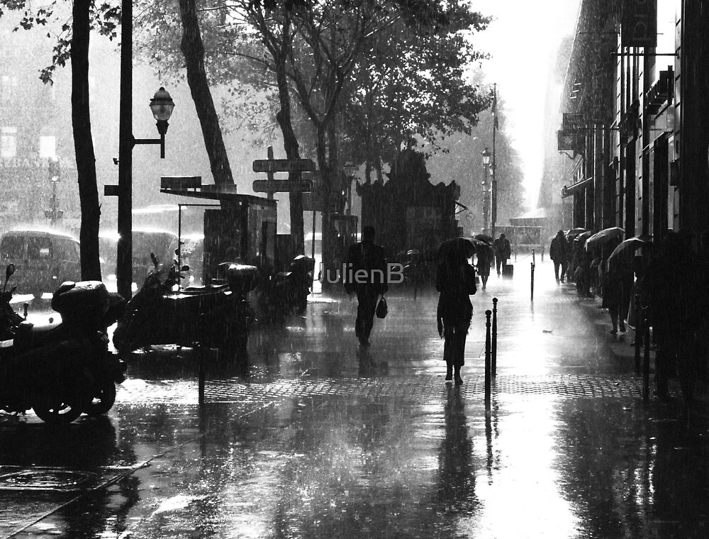 Many Thanks to the Rain by JulienB