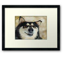 I'm such a goofy dog! Framed Print