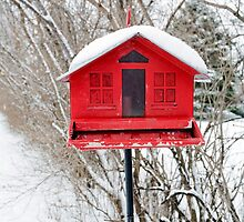 Red Birdhouse by Glennis  Siverson