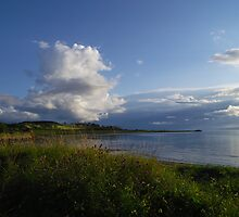 Late summer colours Ettrick Bay, Bute by artyfifi