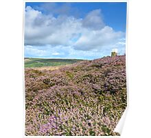 Sea of Heather, North Yorkshire Moors Poster