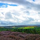 North York Moors at it's best by apple88