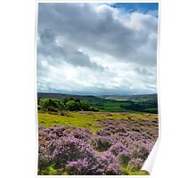 Looking out to Westerdale, North York Moors Poster