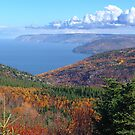 Cape Breton Island, McKenzie Mountain by Jann Ashworth