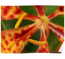 yellow pollen Poster