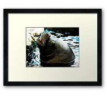 Hey Dude...Wheres the Fish ? Framed Print