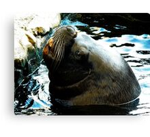 Hey Dude...Wheres the Fish ? Canvas Print