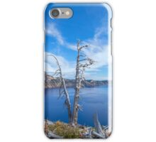 Trees With A View iPhone Case/Skin