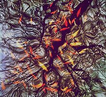 Abstract Koi Pond by lindsycarranza