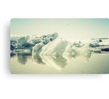 Iceberg III Canvas Print