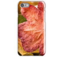 Fall Color iPhone Case/Skin