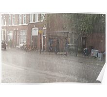 raining cats & dogs Poster