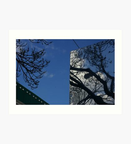 One Tree, Two Viewpoints Art Print