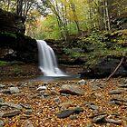 Lewis Falls (Autumn) by Tim Devine