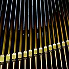 Organ pipes #2 by Erika Gouws