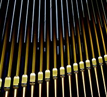 Organ pipes #2 by Erika Gouws