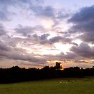 Pluckley at dusk by JEZ22