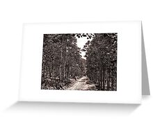 Private Trails Greeting Card