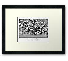Angel Oak Black and white Framed Print