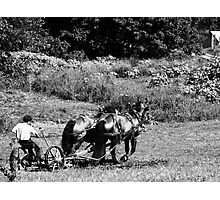 Plowing the Field  Photographic Print