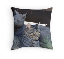 Reality and Fantasy Throw Pillow