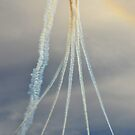 Red Arrows - Flight Path by chazpanzee
