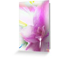 Serene colors of  Love devine Greeting Card