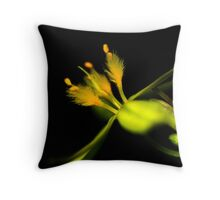 Tricoryne elatior Throw Pillow