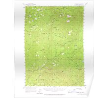 USGS Topo Map Oregon Quartz Mtn 282820 1955 62500 Poster