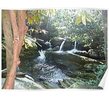 Water Falls on the Middle Prong Trail Poster
