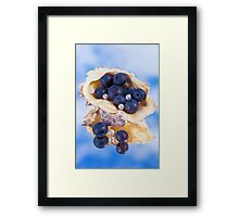 Natural Pearls Framed Print