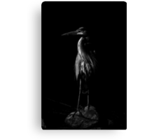Blue in Black and White Canvas Print