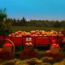 Autumn's Baubles by Barbara Gerstner