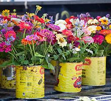Pastene Flower Cans by phil decocco