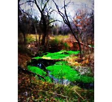 leprechaun pool Photographic Print
