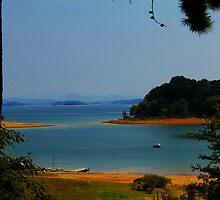 The Lake  by loriwellsphoto