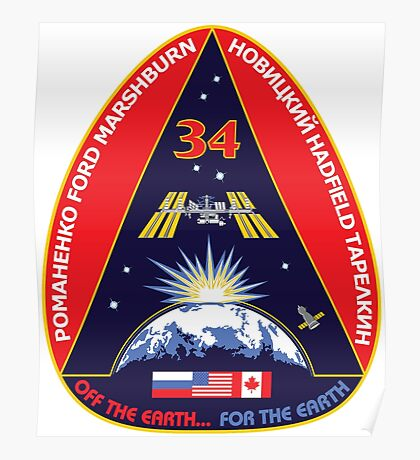 Expedition 34 Mission Patch Poster
