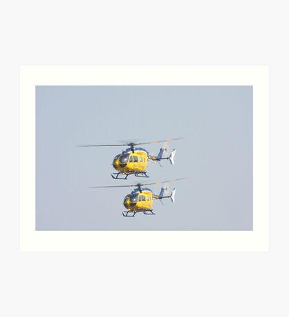 Life Flight Art Print