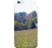 COLOR IN THE COUNTRY iPhone Case/Skin