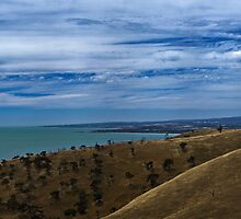 Can You See Adelaide? by zoomak