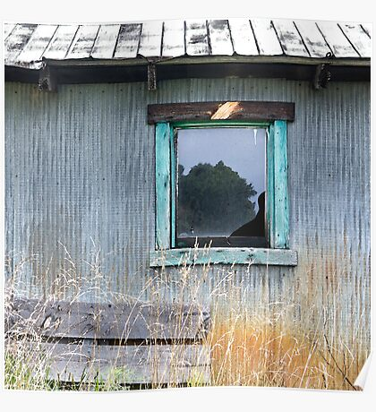 Window Framed in Aqua Poster