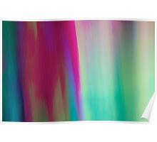 Kawele #13 (Towel Series) Poster
