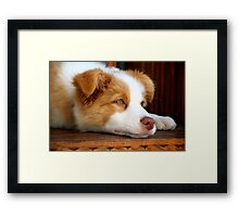 Beautiful Boy Framed Print