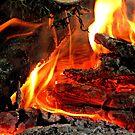 Autumn evening bonfire by Irina777