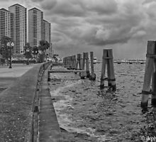 High Point Towers on the Caloosahatchee - by John  Kapusta