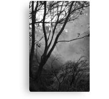 Misted Fire Canvas Print