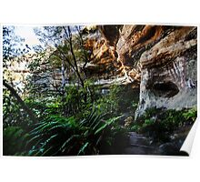 Walls Cave, Blue Mountains, Australia Poster