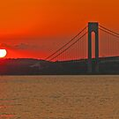 Verrazano Narrows Bridge - New York, New York by michael6076